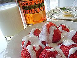 フルーツinヨーグルト はちみつ風味
